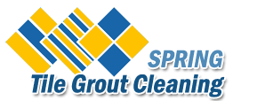 Tile Grout Cleaning Spring